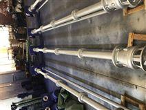 YWP不銹鋼雙管液下泵