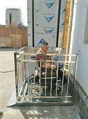 轮椅升降平台