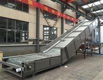 塑料鏈板爬坡輸送機