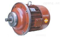 电动葫芦锥形转子电动机
