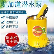 110V潜水泵花园浇水泳池排水泵塑料材质