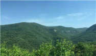 """肩负""""重卡担当""""!中集联合卡车亮相2019集装箱多式联运亚洲展"""